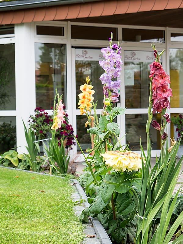 Blumen im Garten der Seniorenresidenz Rosengarten